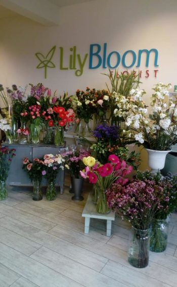 Lily Bloom florist choice