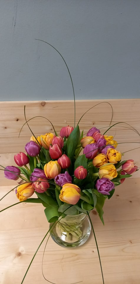 tulips for Mum